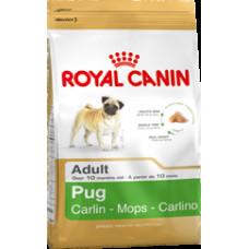 Роял Канин Корм для собак породы мопс в возрасте от 10 мес 1,5 кг