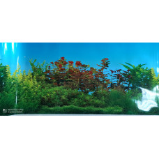 HL-BSWP16 Фон пресноводный с растениями голубой (высота 41 см) 1 м