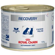 Роял Канин Рекавери Диета для собак и кошек в восстановительный период после болезни 195 г